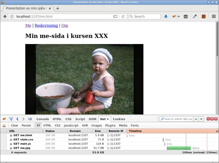 En webbsida med enbart statiska resurser serverade av Express.