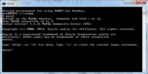 Kör MySQL CLI i shellet.